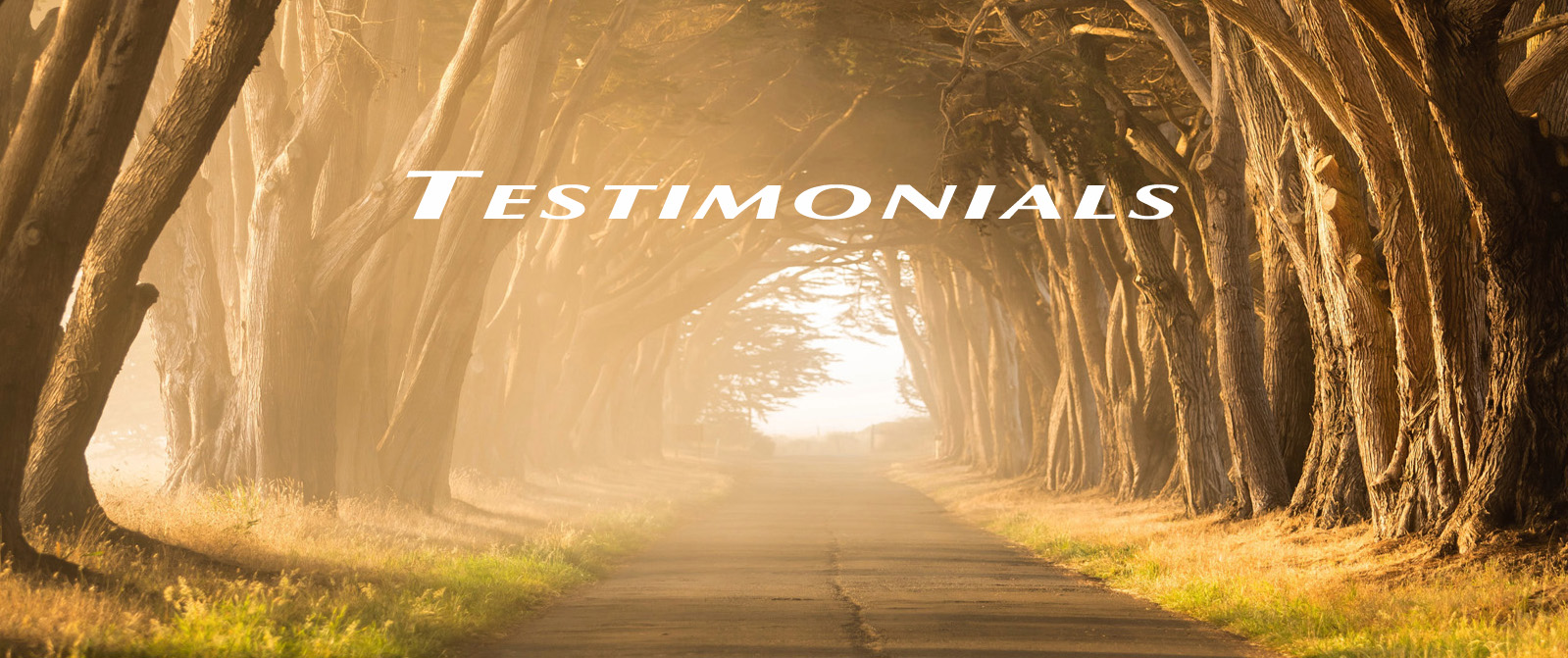 A few testimonials with photo of oakcovered pathway towards light